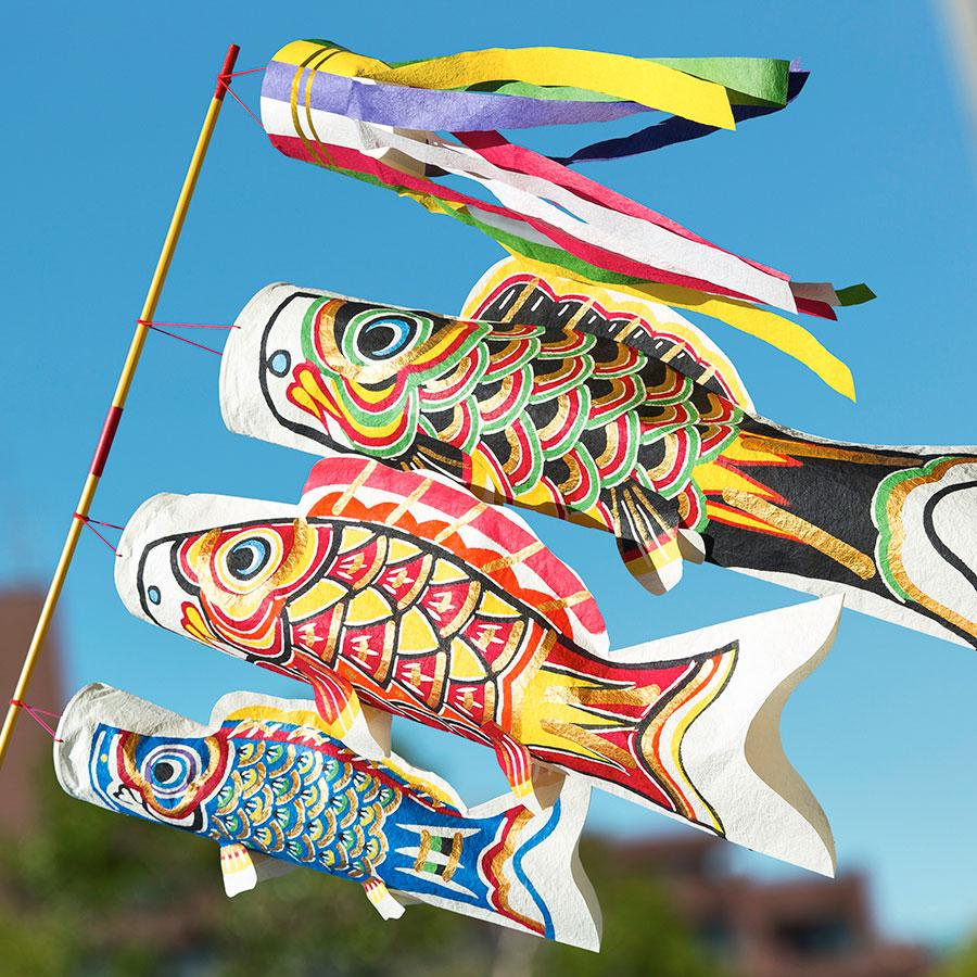【季節限定】桂樹舎 和紙型染鯉のぼり 生き生き鯉大中小セット 端午の節句 子供の日