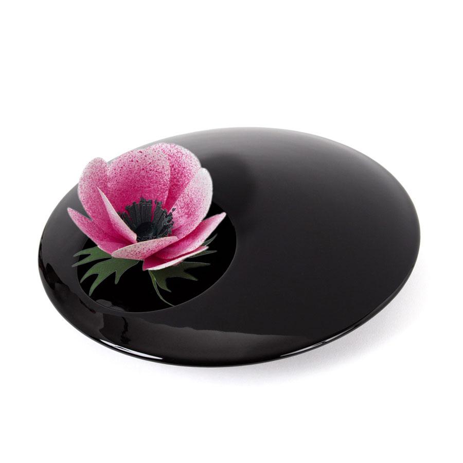 カーネーションDARK BLUE