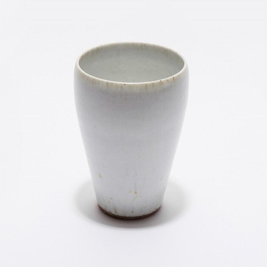 セラニスプロジェクト  平清水焼  青龍窯  ビアカップ