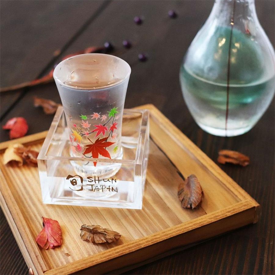 丸モ高木陶器 冷感紅葉 グラス天開 ペアセット
